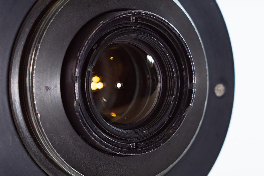 銘玉フレクトゴン 35mm ゼブラ【分解清掃済み・撮影チェック済み】Carl zeiss jena / Flektogon F2.8 35mm M42_53f_画像6