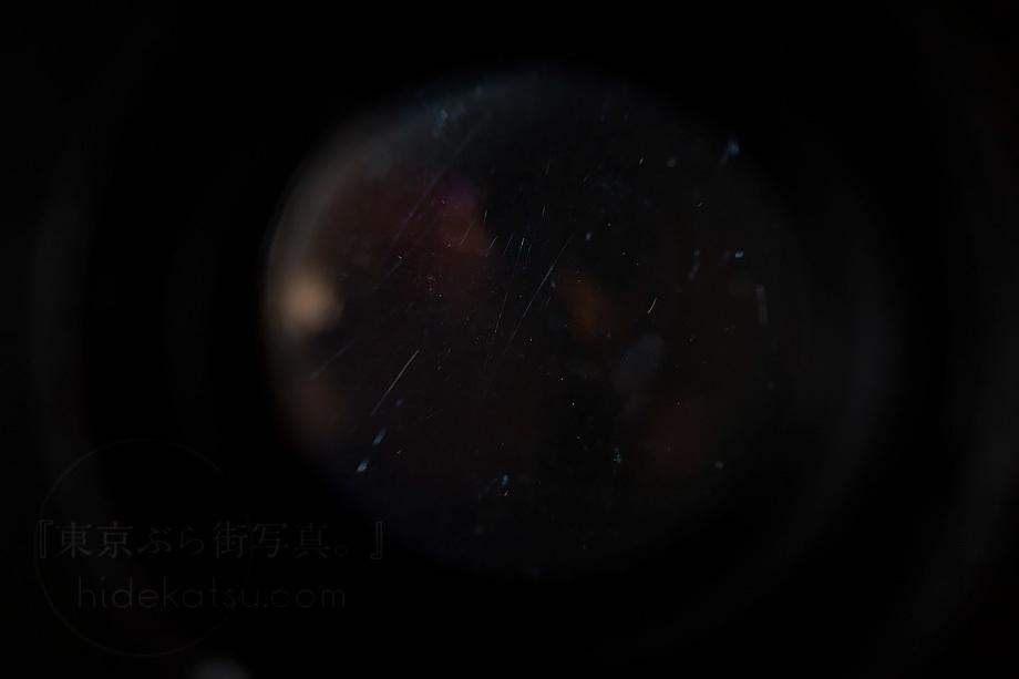 銘玉フレクトゴン 35mm ゼブラ【分解清掃済み・撮影チェック済み】Carl zeiss jena / Flektogon F2.8 35mm M42_53f_画像8