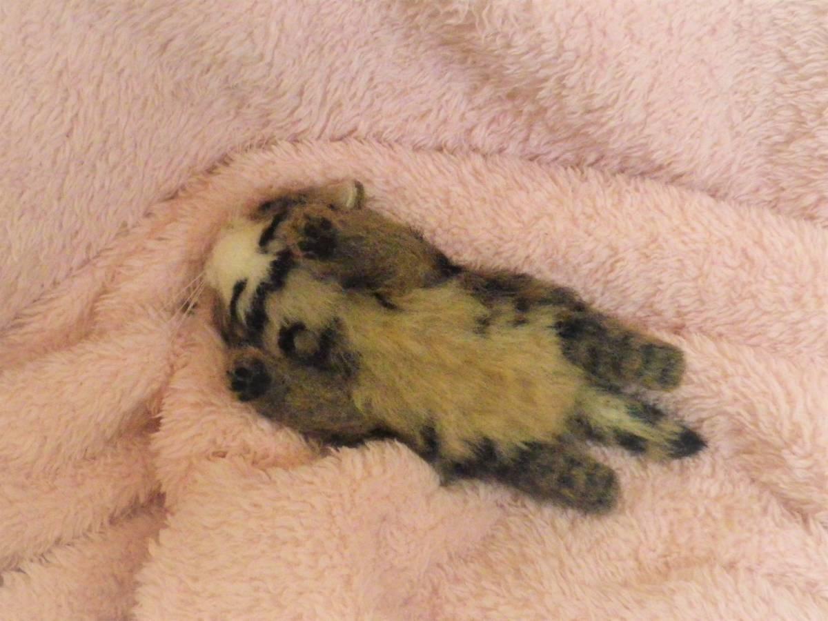 funwari■□■ 羊毛フェルト 赤ちゃん猫 キジトラ ふせ見上げポーズ ハンドメイド_画像10