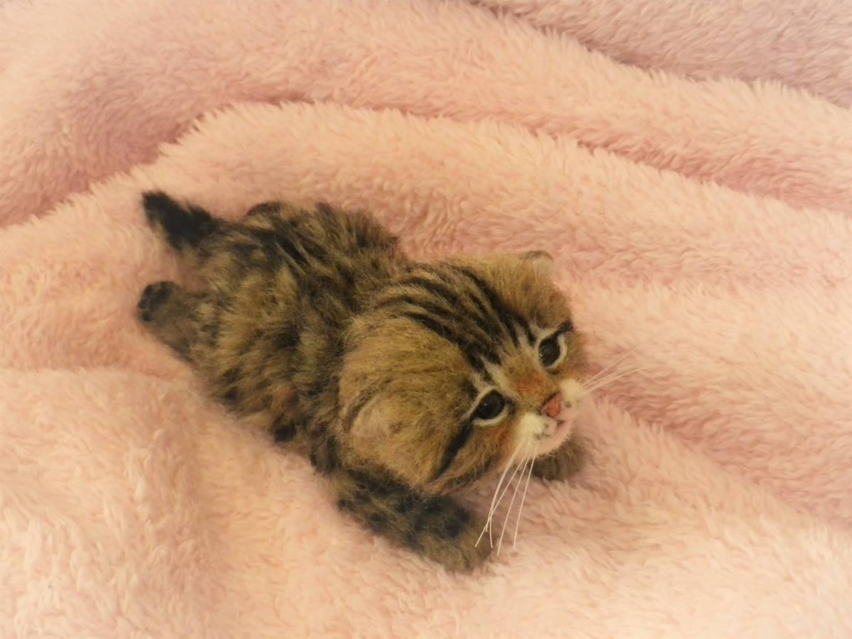 funwari■□■ 羊毛フェルト 赤ちゃん猫 キジトラ ふせ見上げポーズ ハンドメイド_画像4