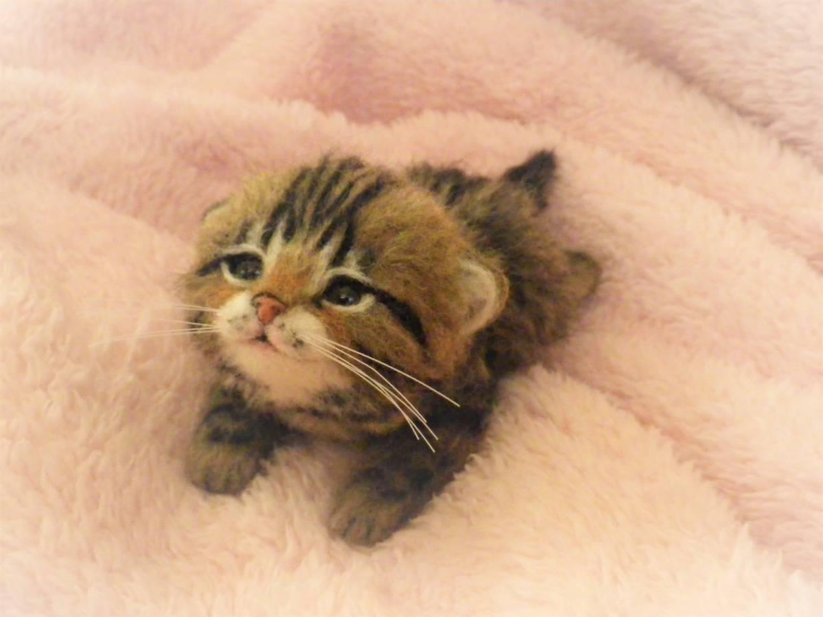 funwari■□■ 羊毛フェルト 赤ちゃん猫 キジトラ ふせ見上げポーズ ハンドメイド