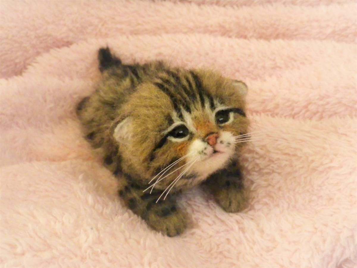 funwari■□■ 羊毛フェルト 赤ちゃん猫 キジトラ ふせ見上げポーズ ハンドメイド_画像2