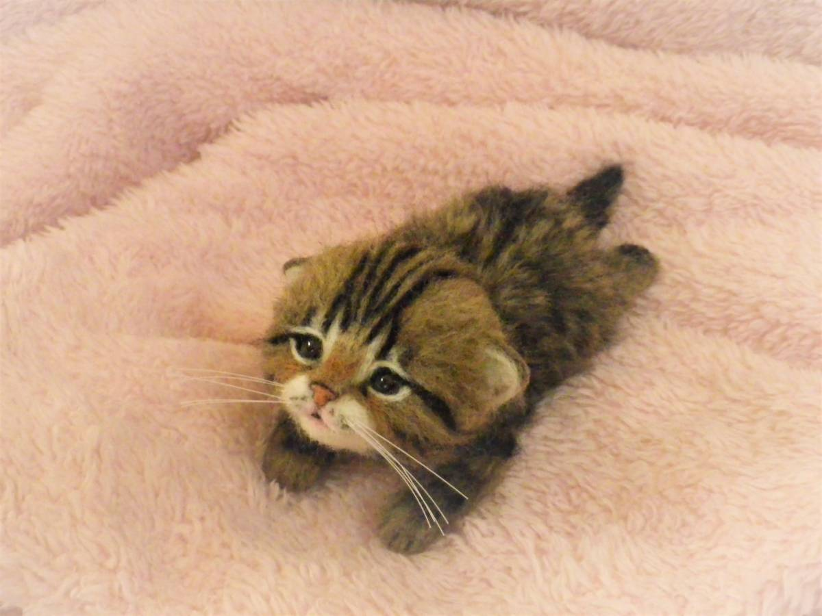 funwari■□■ 羊毛フェルト 赤ちゃん猫 キジトラ ふせ見上げポーズ ハンドメイド_画像6