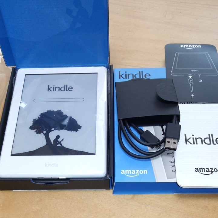 used Amazon Kindle Amazon gold dollar start-up did          dirt is