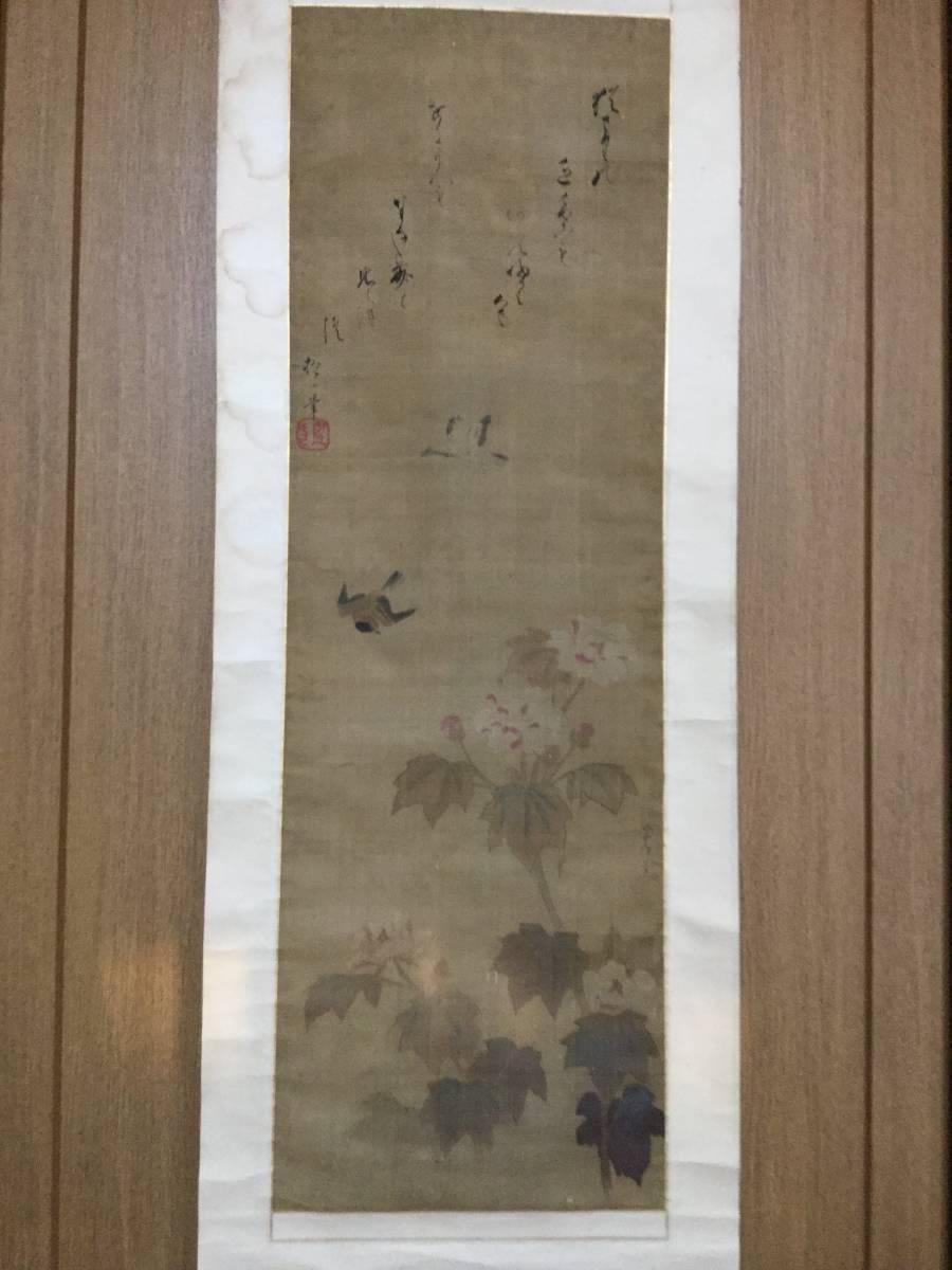 【模写】 酒井抱一賛 狩野常信画 花鳥図 合作 紙本掛軸 合箱 軸先木