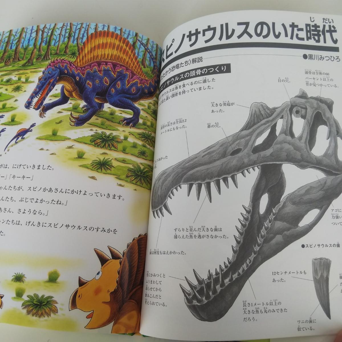 絵本 恐竜 トリケラトプスとスピノサウルス 黒川みつひろ 中古_画像6