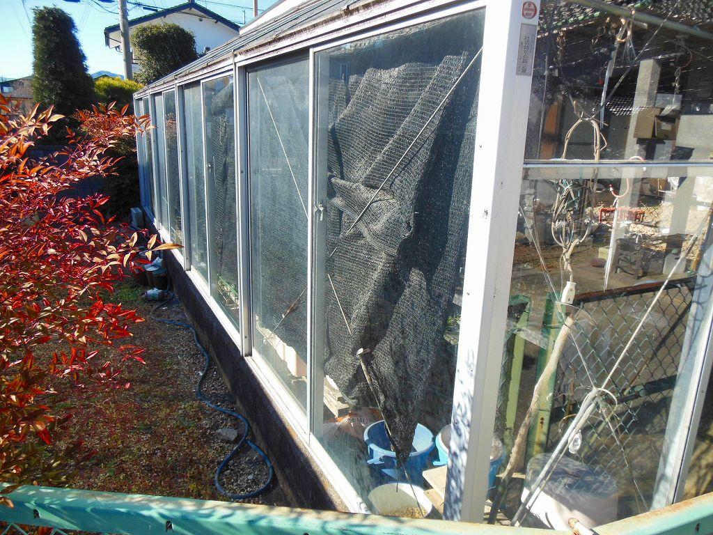 園芸用温室2X4間、激安。条件有り。アルミサッシ、ガラス張り、堅牢。_画像4