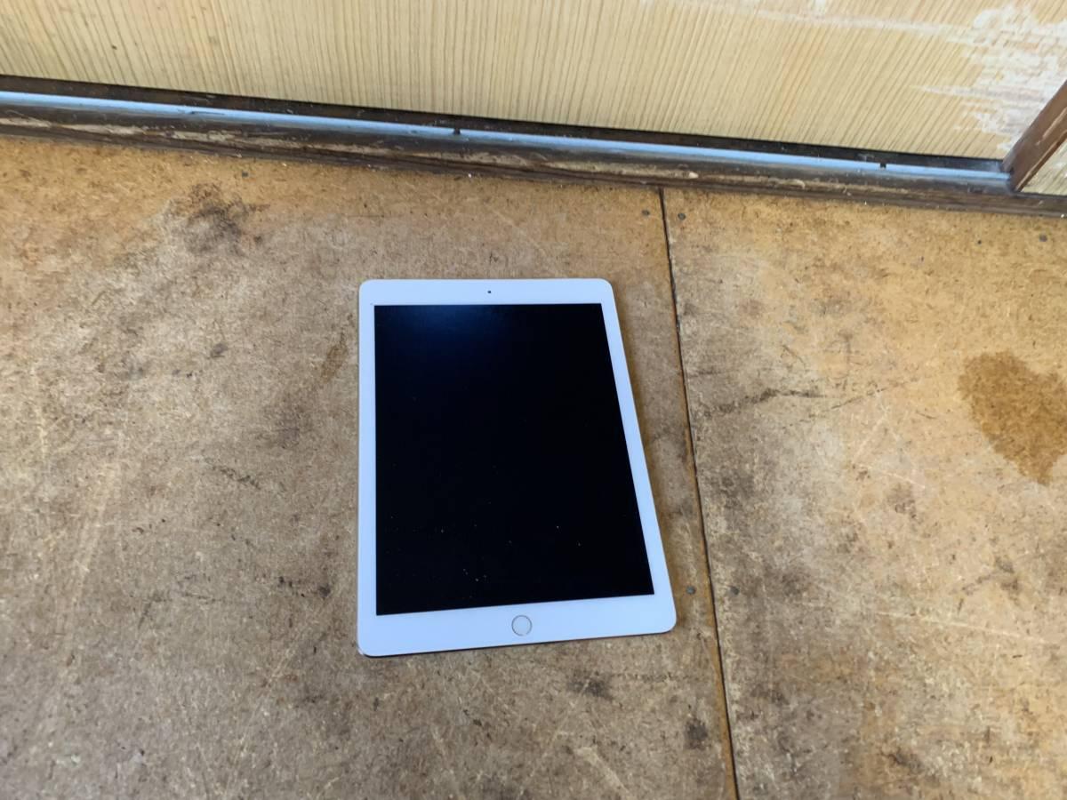 iPad A1567