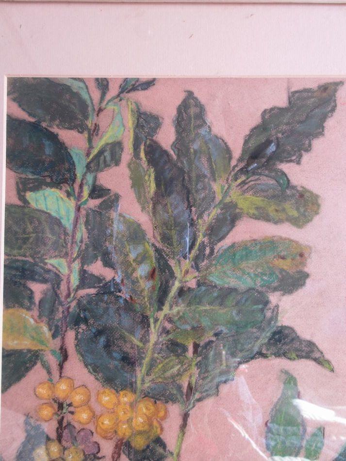矢崎 千代二  洋画家 「コーヒー樹」 パステル画 1930年作 木製額_画像3