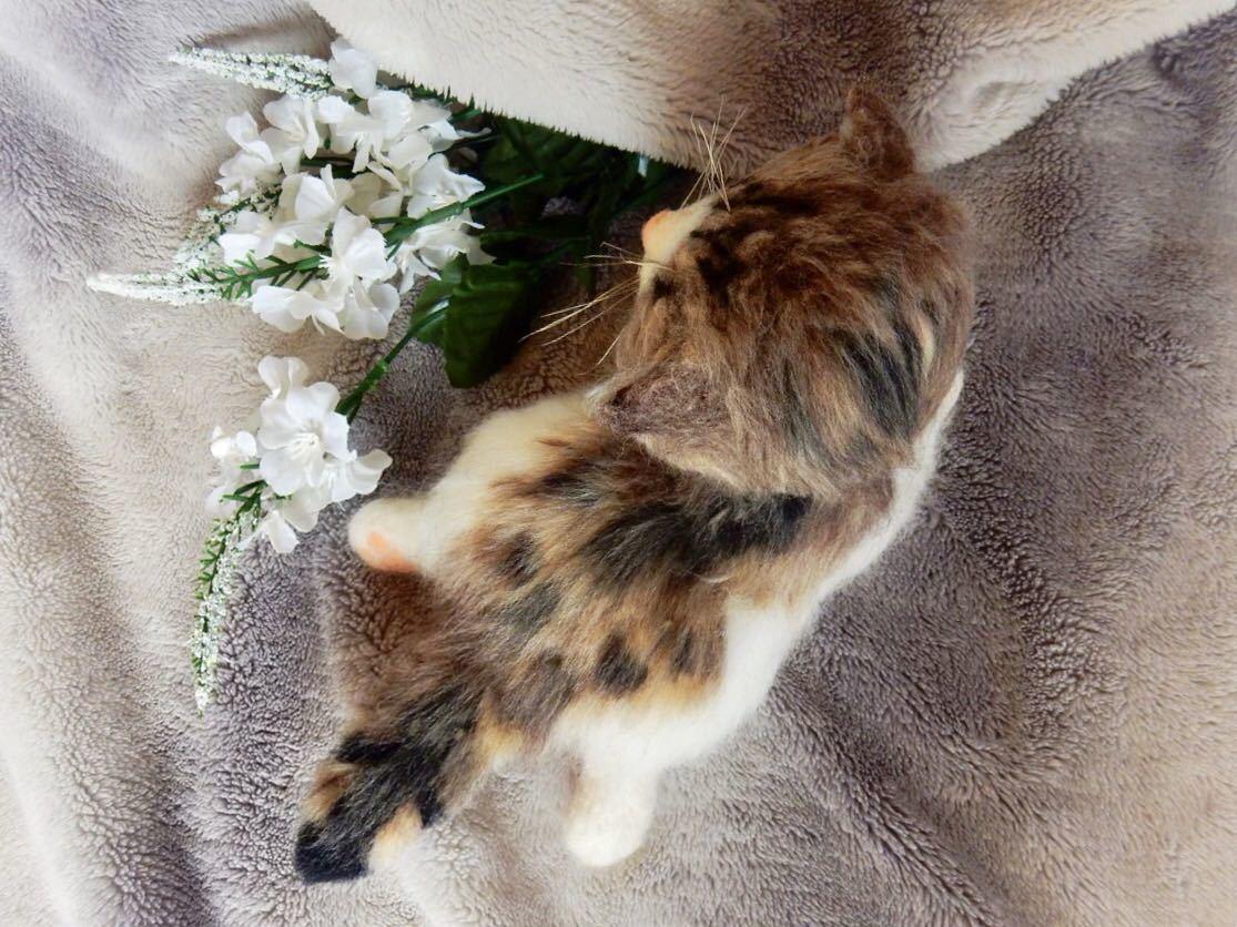 ◆sei◆ 羊毛フェルト キジトラ柄の赤ちゃん猫♪ ねこ 猫 ハンドメイド_画像7