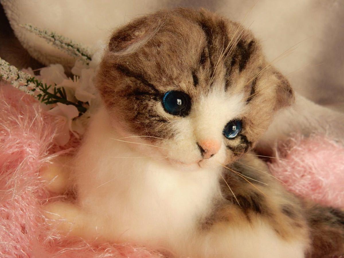 ◆sei◆ 羊毛フェルト キジトラ柄の赤ちゃん猫♪ ねこ 猫 ハンドメイド_画像5