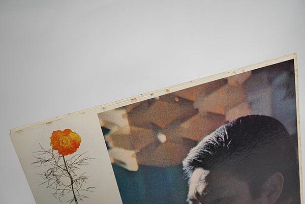 国内プロモ盤LP 古賀力 旅人 帰り来ぬ青春をうたう レア品 寄付品_画像5