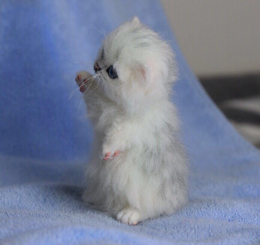 羊毛フェルト 子猫 チンチラ 猫 ハンドメイド 手作り人形 ぬいぐるみ グレー ホワイト_画像3