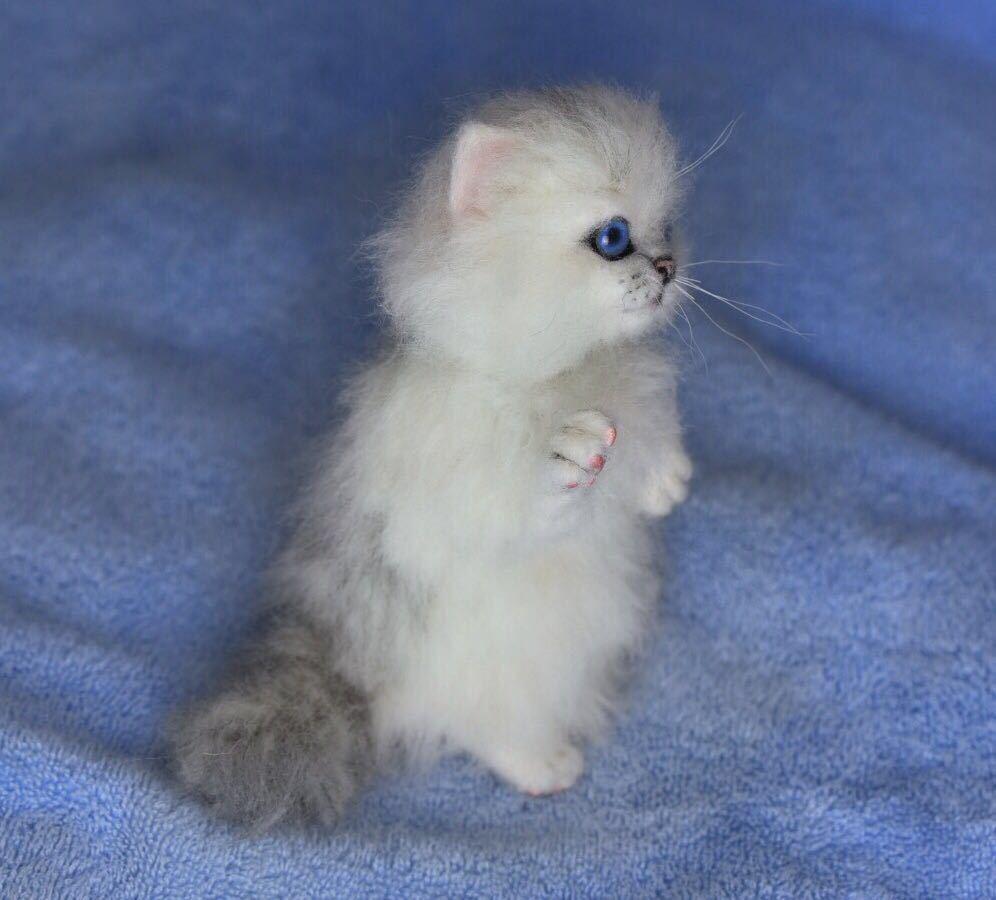 羊毛フェルト 子猫 チンチラ 猫 ハンドメイド 手作り人形 ぬいぐるみ グレー ホワイト_画像8