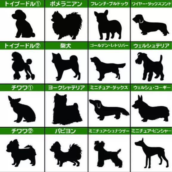 【送料込み】ポメラニアン ステッカー シルエット 給油口 車 犬 名前入れ無料 愛犬家_画像4