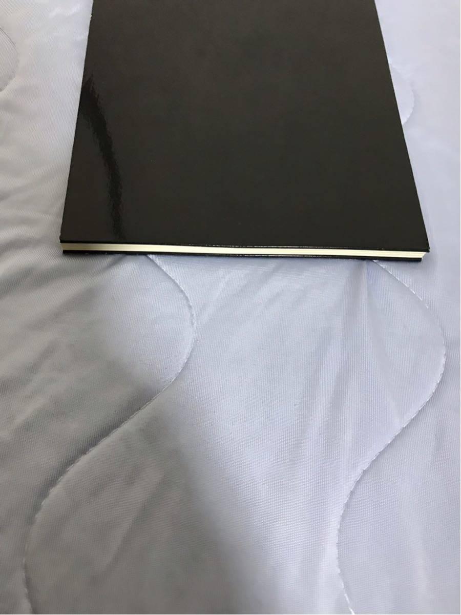 【即決】【非売品】 07SS DIOR HOMME ディオールオム ルックブック カタログ 即決早い者勝ち_画像4
