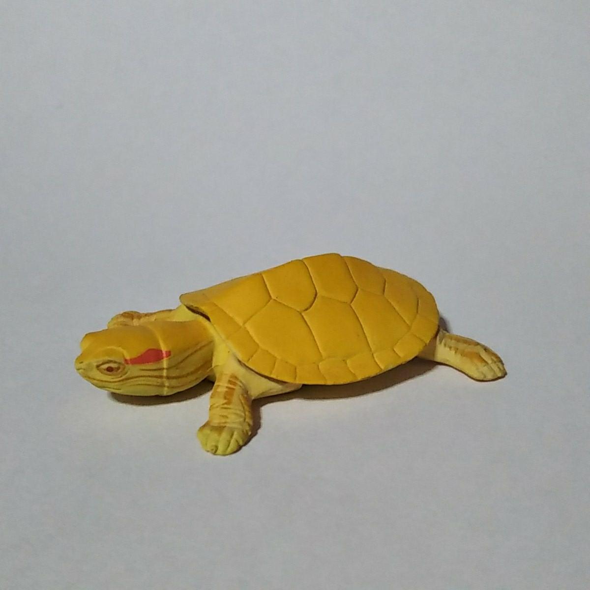 フルタ チョコエッグ 動物シリーズ ミドリガメ(アルビノ)_画像1