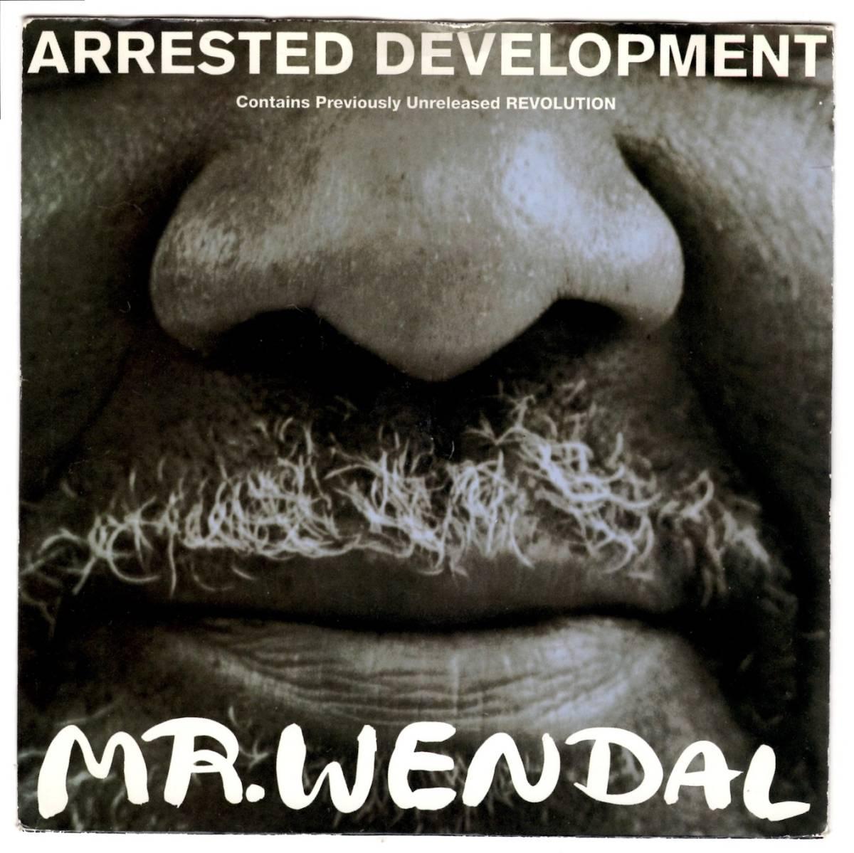 RAP 45★Arrested Development / Mr Wendal / Revolution / MURO / KOCO / NORI / 7インチ _画像1