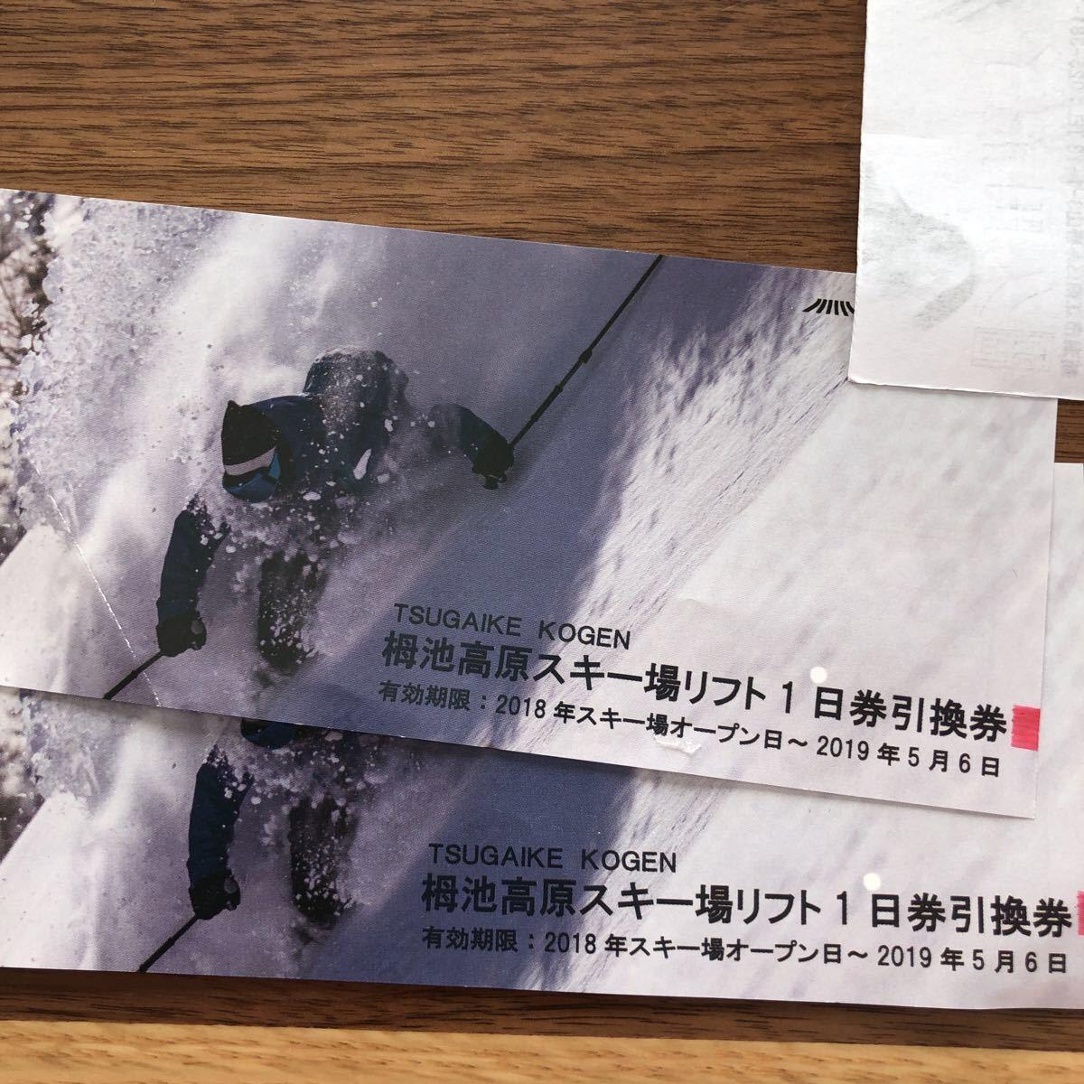 送料込み!栂池高原スキー場リフト券ペア