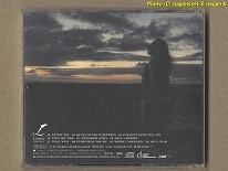 CHRISTIAN RIESE LASSEN (クリスチャン・リース・ラッセン) / TURN THE TIDE -- イルカ絵画で有名なラッセンのアメリカンロックです_画像2