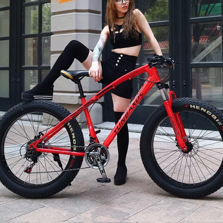完全売り切り 新品 ファットバイク ビーチクルーザー 電動 アシスト 自転車 ロード クロス バイク 競輪 セグウェイ マウンテンバイク _画像8