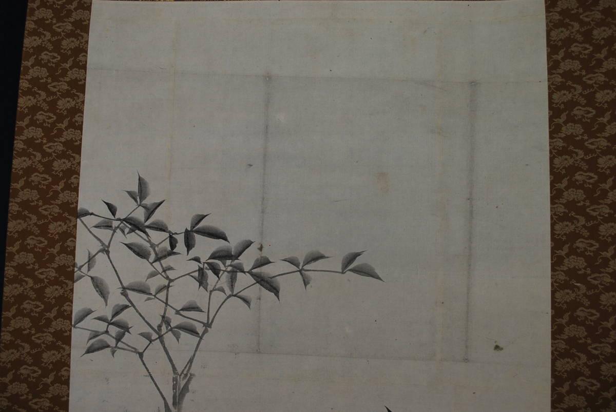【真作】作者不詳/南天小禽図/掛軸☆宝船☆S‐418_画像3