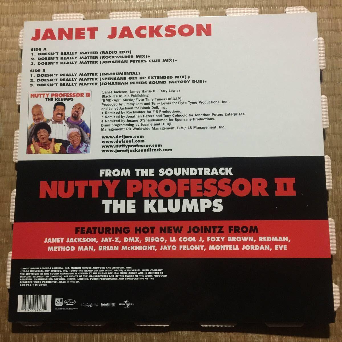 ジャネット・ジャクソン Janet Jackson Doesn't Really Matter EU盤レコード_画像2