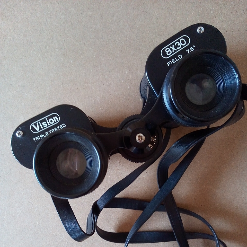 【VISION 双眼鏡 8×30 ケース付き中古】_画像2