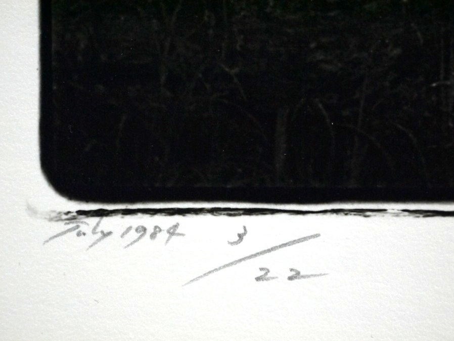 ■真作保証■【大坂寛】 ゼラチンシルバープリント 『Syzygy #32 July1984』■ed.22■サインあり■額装:41.5×32cm■_画像7