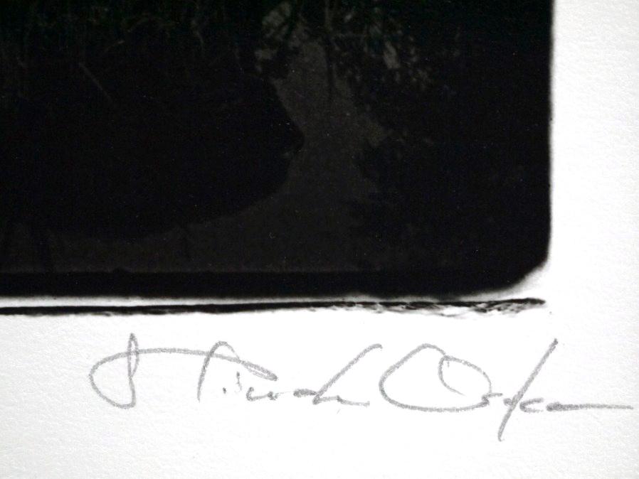 ■真作保証■【大坂寛】 ゼラチンシルバープリント 『Syzygy #32 July1984』■ed.22■サインあり■額装:41.5×32cm■_画像8