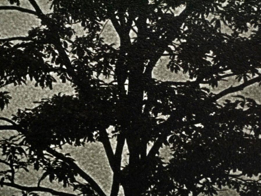 ■真作保証■【大坂寛】 ゼラチンシルバープリント 『Syzygy #32 July1984』■ed.22■サインあり■額装:41.5×32cm■_画像6