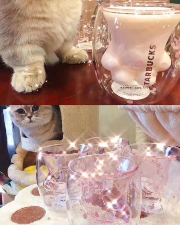 Starbucks 猫の手 ガラスコップ スタバ グラス 桜 海外限定!二つ入り3_画像3