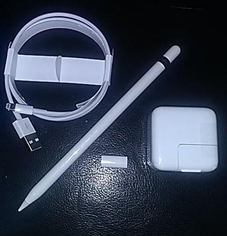 ★Appleペンシル USBケーブル USB電源アダプタ USBケーブル用変換アダプタ 4点SET