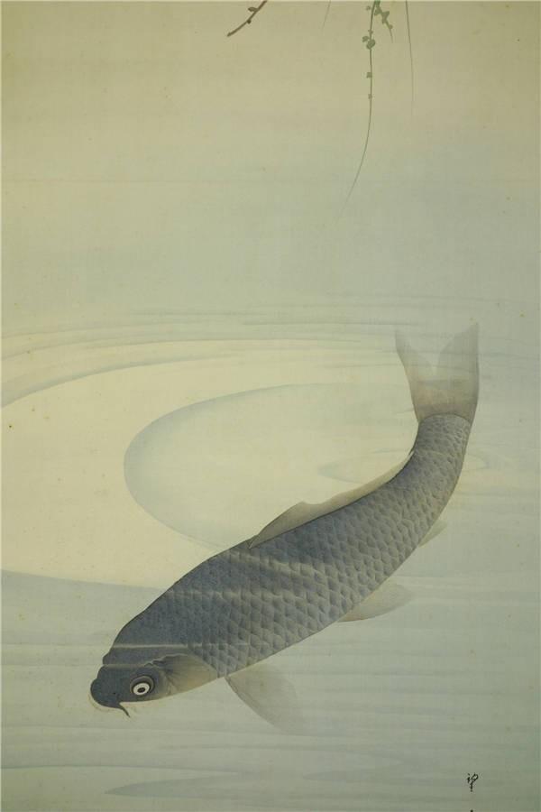 【真作】【華】佳品 京都の日本画家 望月玉成 『松鯉図』 二重箱 共箱 エ3318_画像5