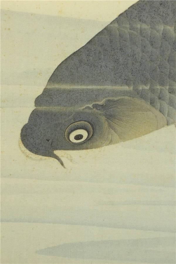 【真作】【華】佳品 京都の日本画家 望月玉成 『松鯉図』 二重箱 共箱 エ3318_画像8