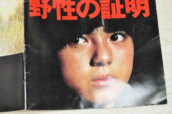 中古■当時物 小冊子付 映画パンフレット 野生の証明 高倉健 薬師丸ひろ子_画像3