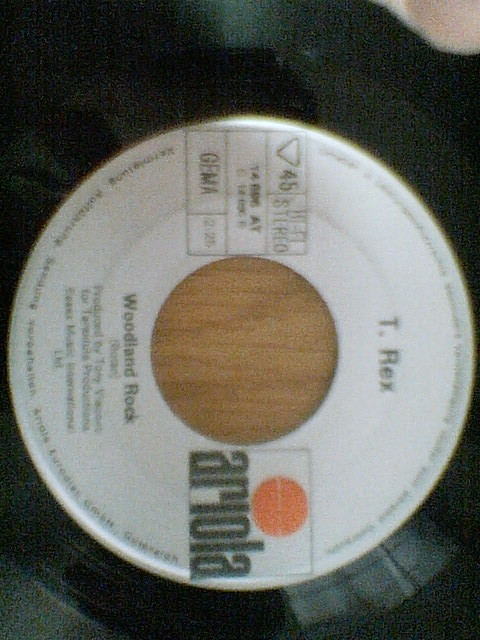 T.Rex: Hot Love / Woodland Rock ; Germany Ariola 7 inch 45 with Pcture Sleeve _画像2
