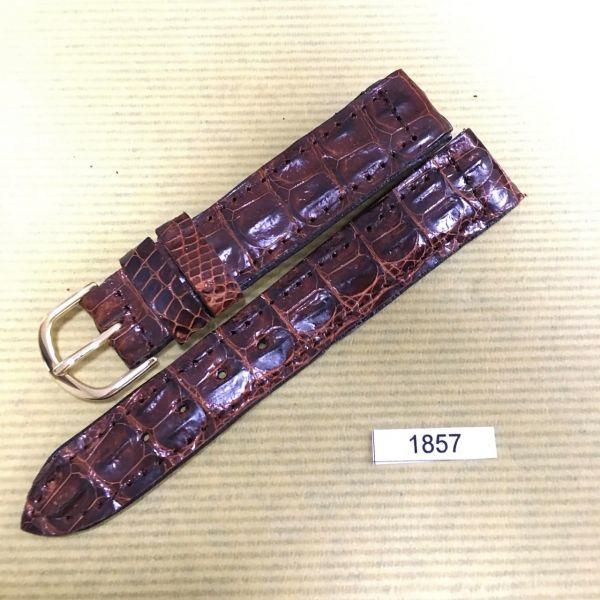 1円~|1857|ラグ幅18mm|クロコダイル|ワニ革|バネ棒おまけ|時計ベルト|売切り|処分