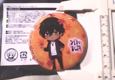 大倶利伽羅 刀剣乱舞 花丸 四季コレクション 缶バッジ 秋 TOHO AJ AnimeJapan2019