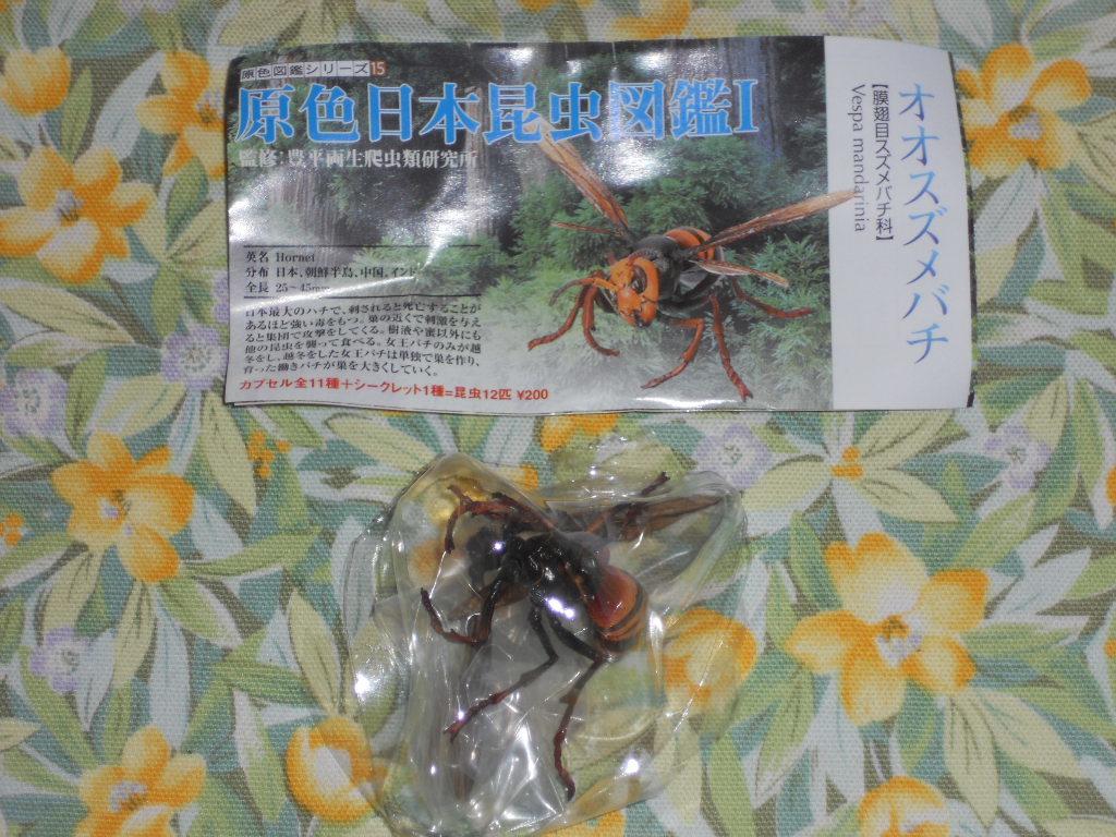 オオスズメバチ 原色日本昆虫図鑑1_画像1