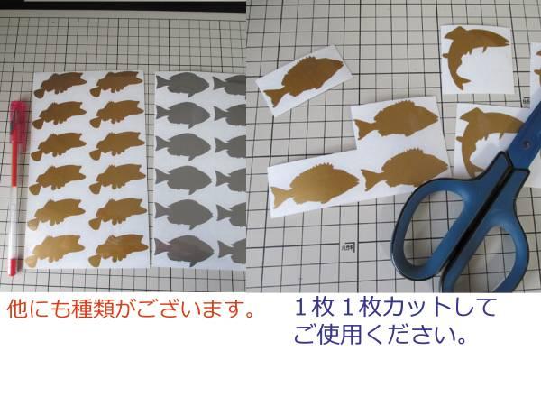 ●魚 クエ(モロコ)12枚 ミニステッカー 金か銀色選べる 533I_画像3