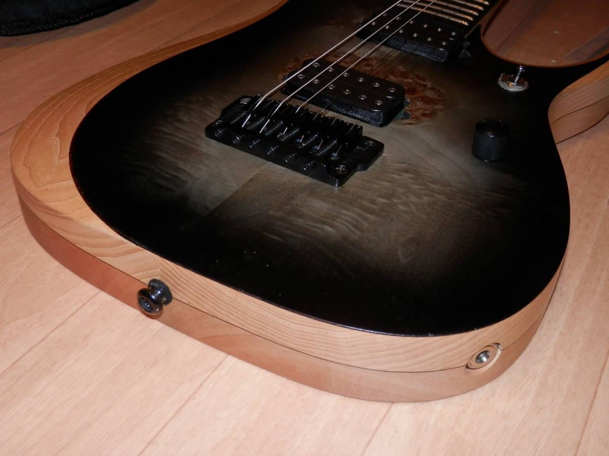 希少エボニー指板モデル Ibanez RGDIX6PB-SKB RGD Iron Label _画像2