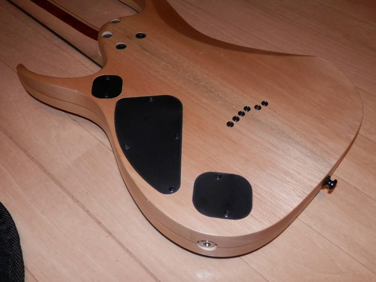 希少エボニー指板モデル Ibanez RGDIX6PB-SKB RGD Iron Label _画像8