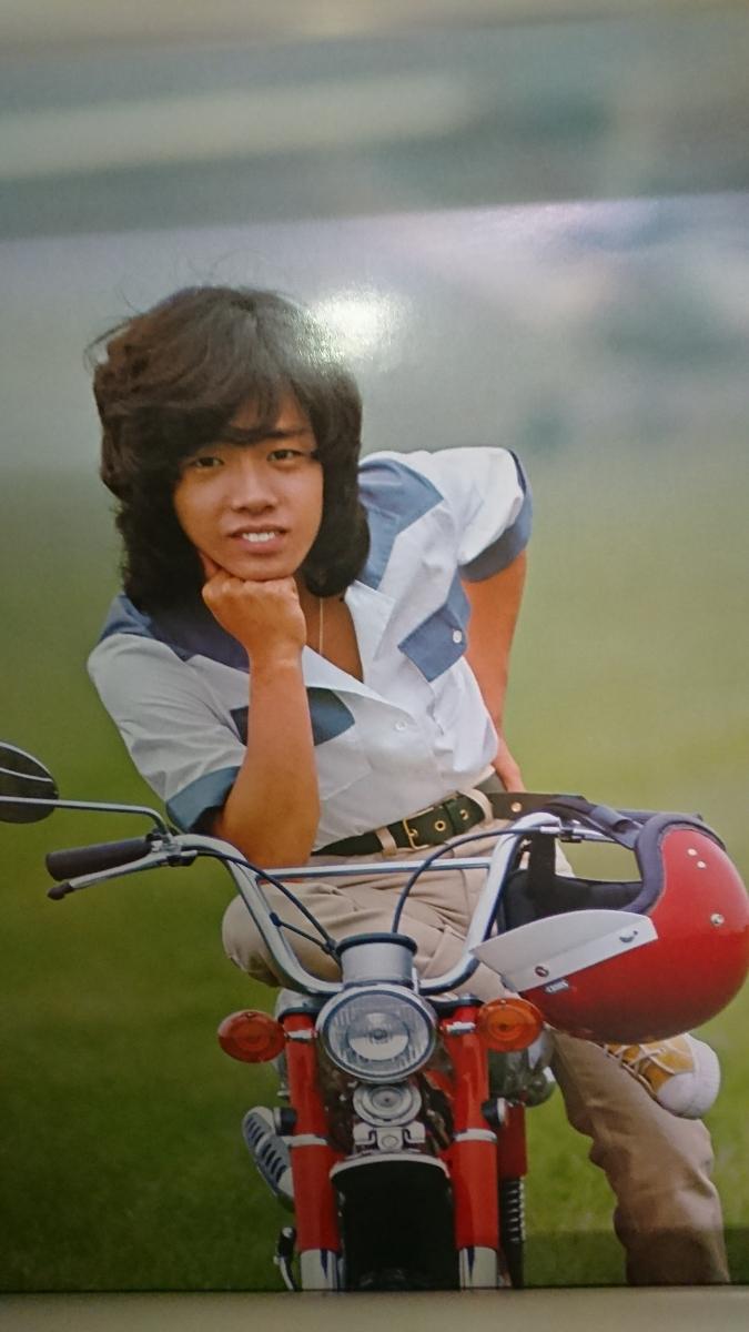 渡辺プロダクション スターミュージックカレンダー 1976年 渡辺プロタレント友の会 沢田研二、キャンディーズ 森進一等_画像9