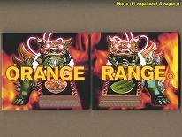 ★即決★ ORANGE RANGE BEST ALBUM -- 「ORANGE」と「RANGE」