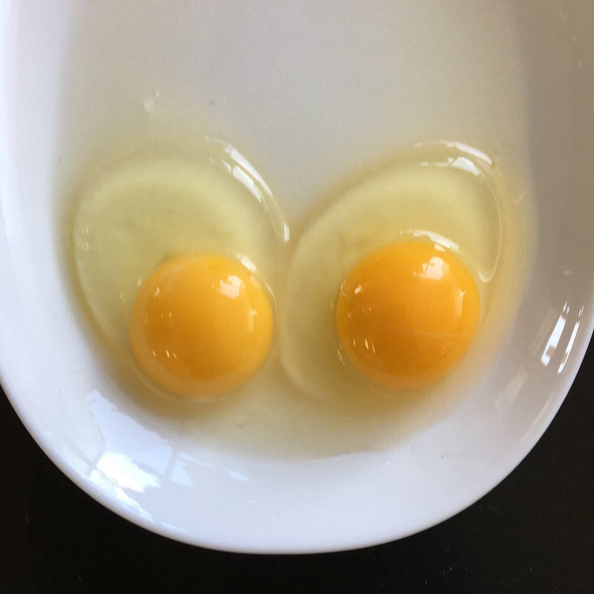 烏骨鶏 翡翠鷄 五個のお値段で1つ割れ保証です_画像4
