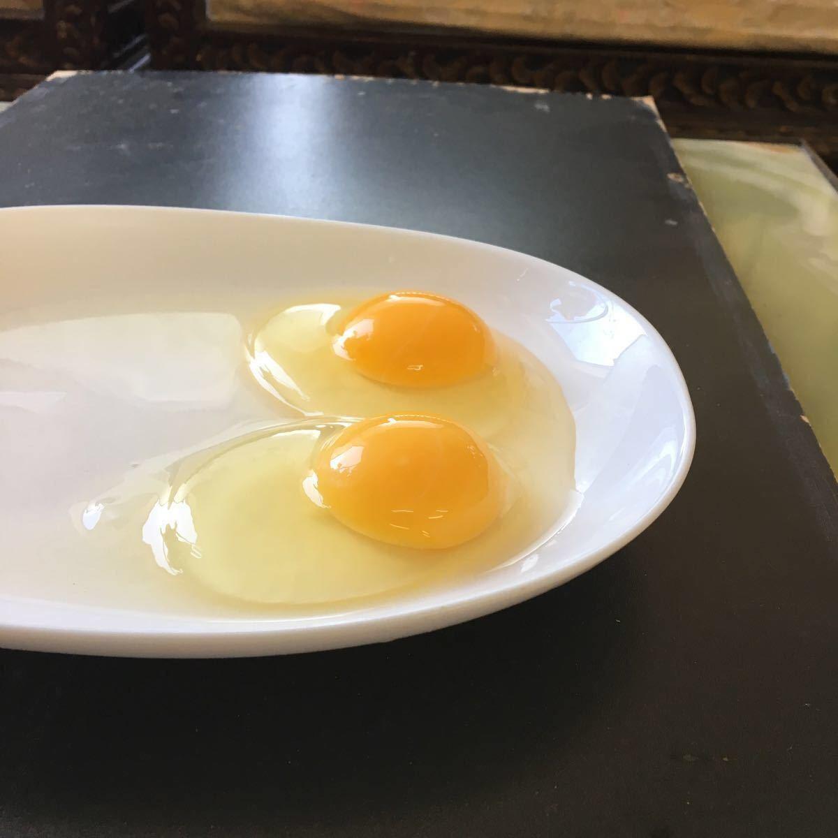 烏骨鶏 翡翠鷄 五個のお値段で1つ割れ保証です_画像3