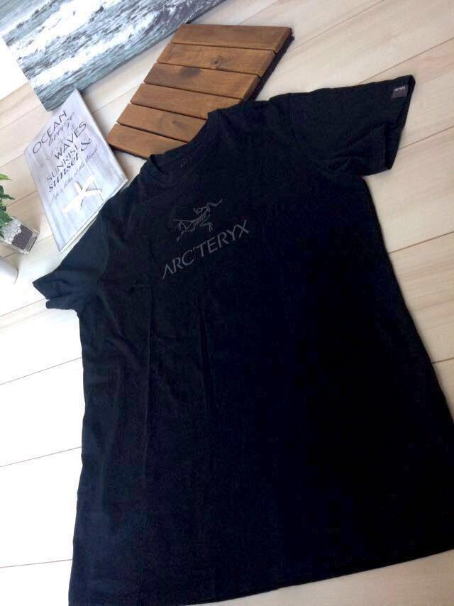 アークテリクス最落なし1円送料無料 胸ロゴ メンズ L Tシャツ 登山 アウトドア THE NORTH FACE マウンテン ヘリーハンセン パタゴニア _画像5
