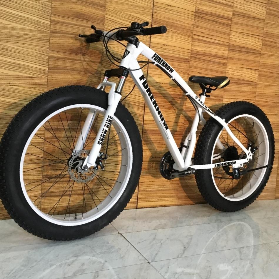 完全売り切り 新品 ファットバイク ビーチクルーザー 電動 アシスト 自転車 ロード クロス バイク 競輪 セグウェイ マウンテンバイク _画像2