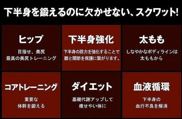 豪華特典付! エクササイズ スクワットマジック ヒップアップ 動画DVD付 効果的な自動 下半身運動器具 運動器具 運動用品 日本語説明書付b_画像5